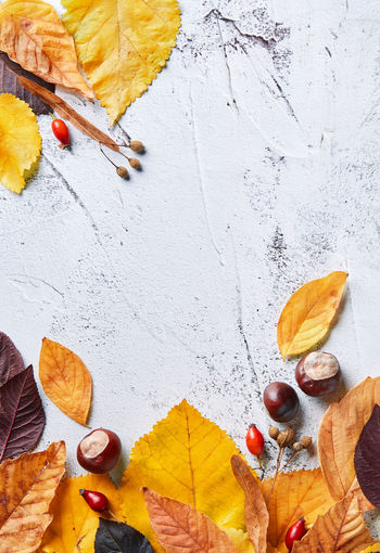 Close-Up Of Autumn Leaves With Chestnuts On Table