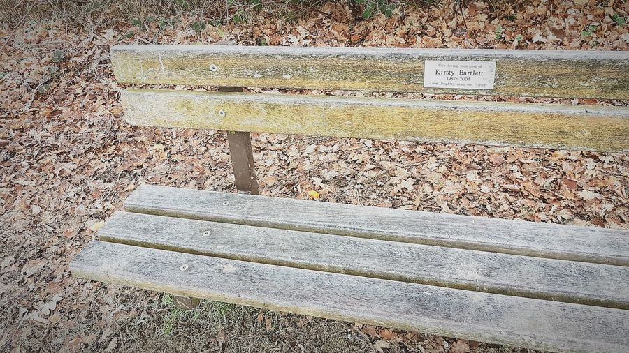Outdoors Day No People Close-up Nature Winter Cold Temperature Beauty In Nature Memorial Bench