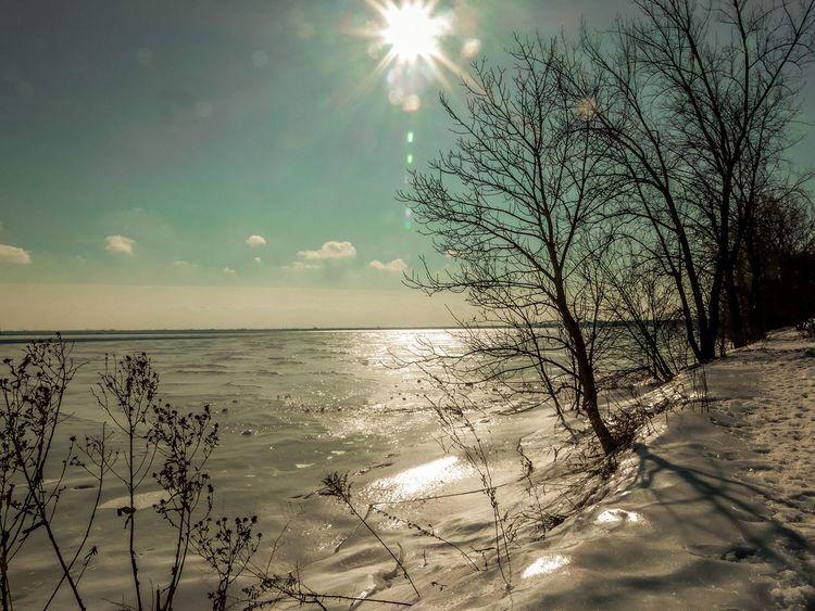 Winterlove FZ300 Lumix Montreal, Canada Snow Cold Temperature First Eyeem Photo