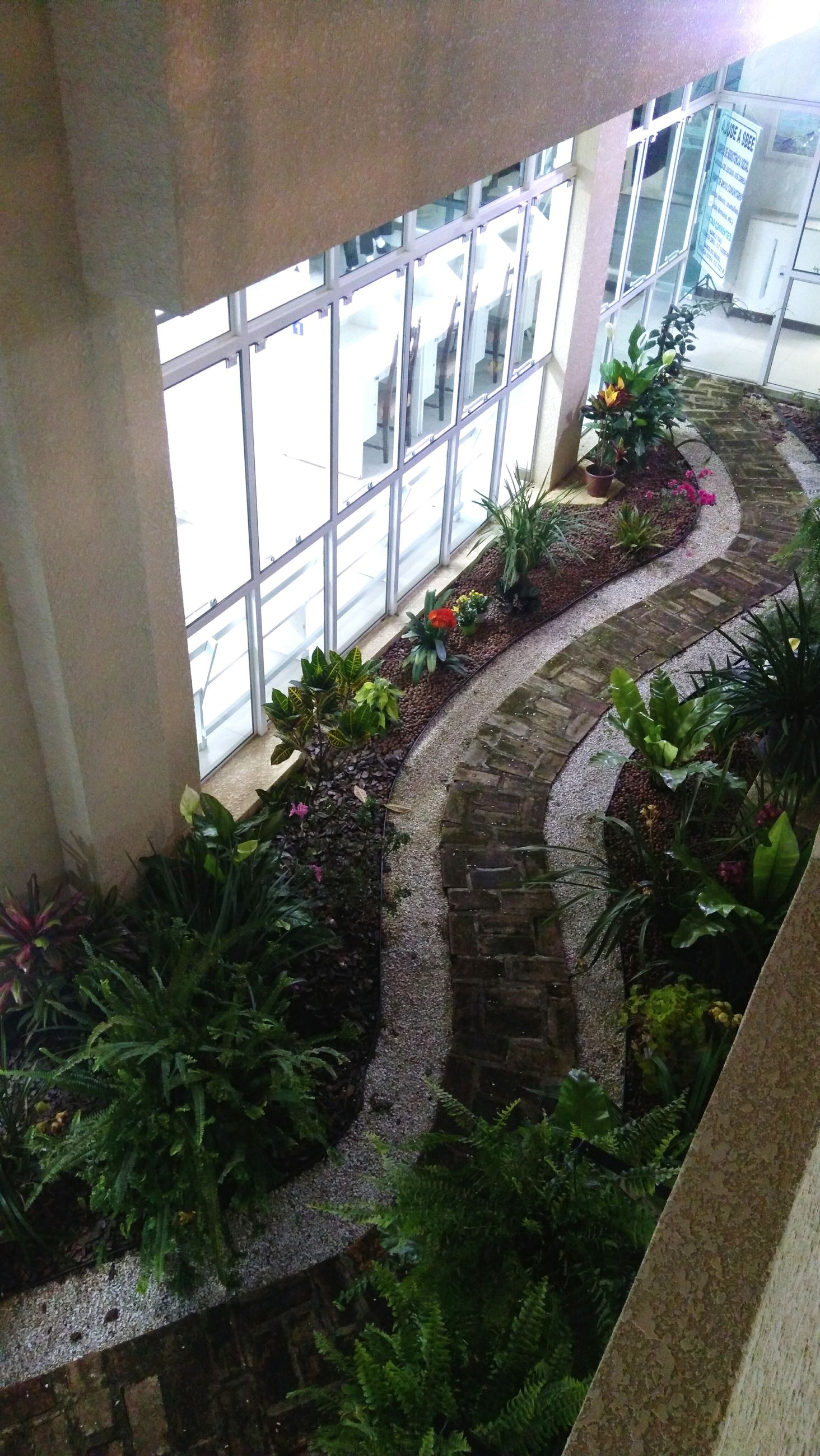 architecture, built structure, building exterior, plant, no people, growth, day, outdoors, nature, greenhouse