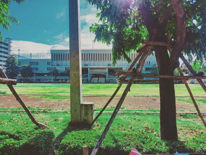 My university @KMUTT Tree Grass Outdoors Architecture Day No People Built Structure Building Exterior Sky Prison Vacations Live For The Story EyeEmNewHere Place Of Heart