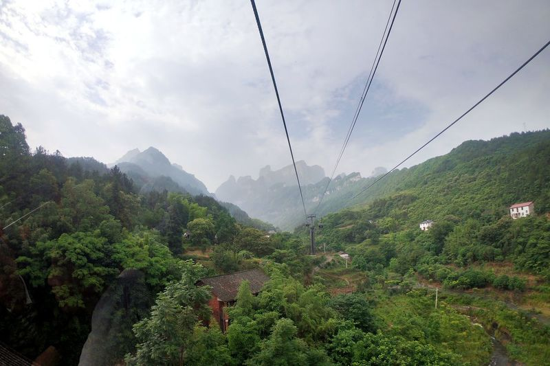 Cable car to the mountain Landscape Mountain China Tianmen Mountain Cable Car Tea Crop Tree Mountain Agriculture Forest Fog Sky Landscape