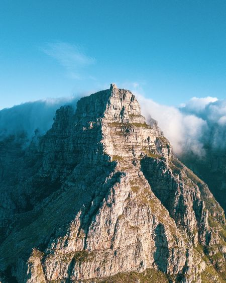 Table mountain ❤️ Sky Scenics - Nature Nature Beauty In Nature Sea Water Tranquil Scene Mountain Tranquility Cloud - Sky Land No People Blue Rock Day Non-urban Scene Rock - Object Solid Idyllic Coniferous Tree