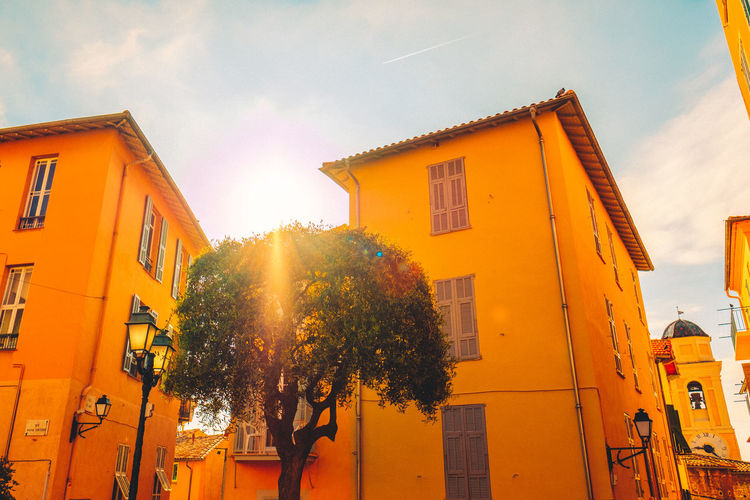 Architecture Building Exterior Buildings Built Structure City Day Low Angle View Low Angle View Nature No People No People Outdoors No People, Outdoors Residential Building Sky Sunbeam Sunlight Sunray Town Tree Tree Village Life Warm Colors Warm Colours Yellow