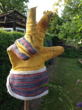 Garden Garden Photography Work Gardenwork Glove Work Gloves Peace Gardening Safety Summer Hobby