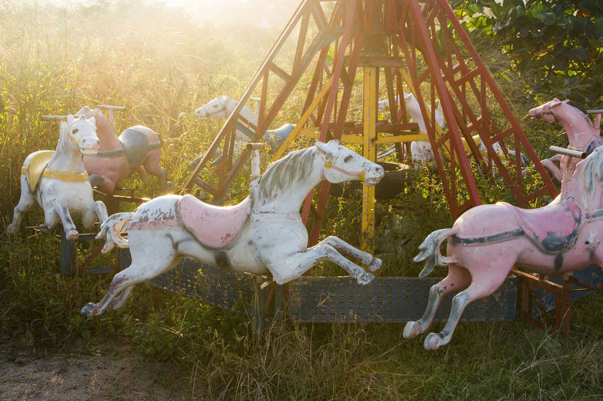 Abandoned Amusement Park Animal Themes Carousel Carousel Horse Day Enjoyment Fun Julhofragaphotography Nature No People Outdoors