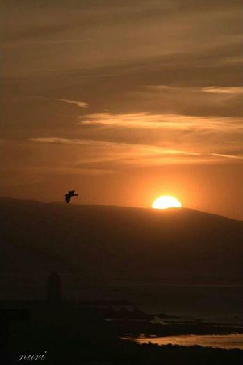 Sunset , landscape, sun