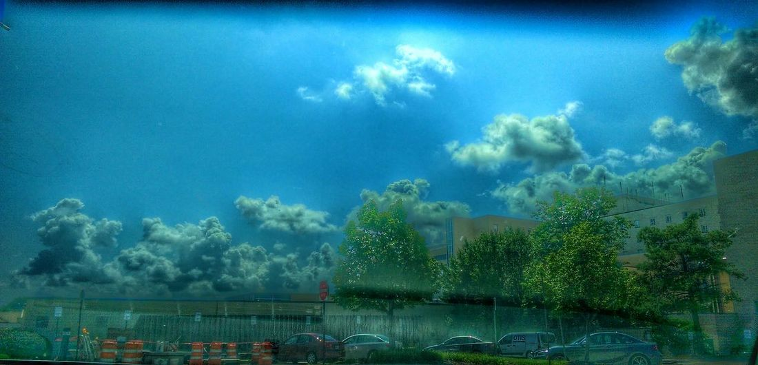 Mother Vs Nature Buildings And Sky Trees And Clouds Creative Light And Shadow Tinted Glass Through My Eyes We Are Nature