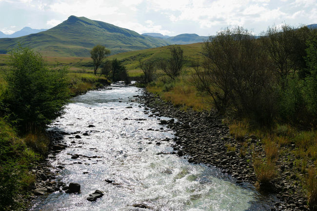 Beauty In Nature Day Drakensberg - Mountains Background EyEmNewHere Flowing Water Grass Growth I Love Nature 🌱 Landscape Love Moving Water Love Water Mountain Mountain Stream Nature No People Outdoors River Scenics Sky Sparkling Stream Sparkling Water Tree Water