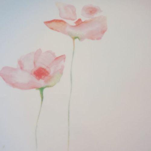Ze Flower Power. Toutcequireste Flower Plate Porcelaine Alone Live