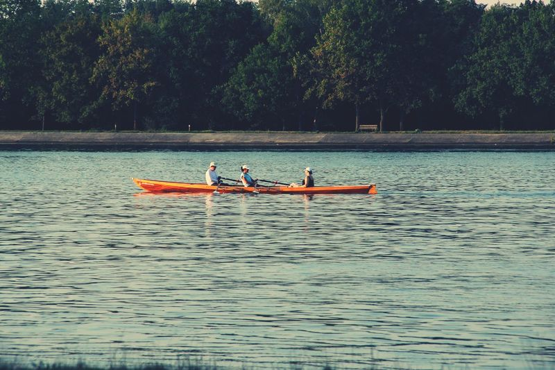Rhein Rhein River Sports Photography Loisirs Lake Water Nature Kayak Outdoors Weekend Activities Beauty In Nature Pedal Boat People Leisure Activity Tree Nautical Vessel Day Naturelife