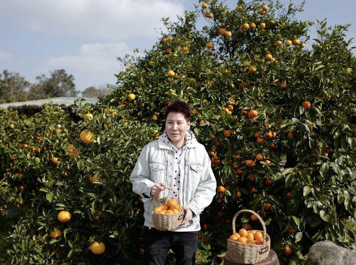 Portrait of smiling man holding oranges in basket at farm