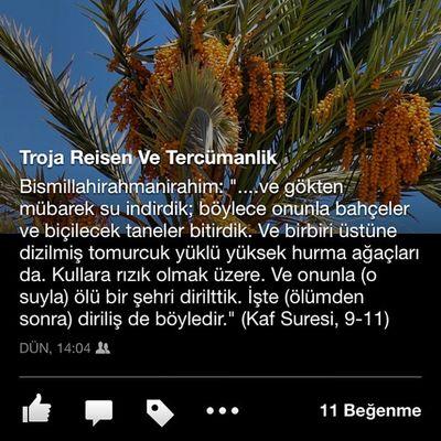 Facebook'ta takip edin sayfamızı: Troja Reisen ve Tercümanlık !!!