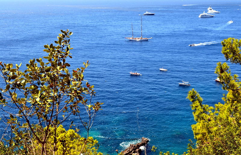 Amalfi Coast Capri, Italy Mediterranean Sea Naples Balearic Islands Beauty In Nature Blue Day High Angle View Horizon Over Water Mode Of Transport Nature Nautical Vessel No People Outdoors Plant Positano Scenics Sea Sky Tranquil Scene Tranquility Transportation Tree Water