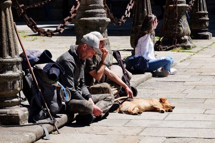 Pilgrims arrival, exhausted. Christian Religion Christianity Religion Pilgrimage Pilgrim Real People Sunlight Day Vertebrate Nature Men Group Of People People Outdoors Sitting City Domestic Animals One Animal The Street Photographer - 2018 EyeEm Awards The Portraitist - 2018 EyeEm Awards