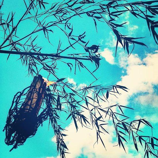 送り火 夏 お盆 ご先祖様 送り火 種生 Summer Instalike Instagood Instadaily Japan 写真好きな人と繋がりたい