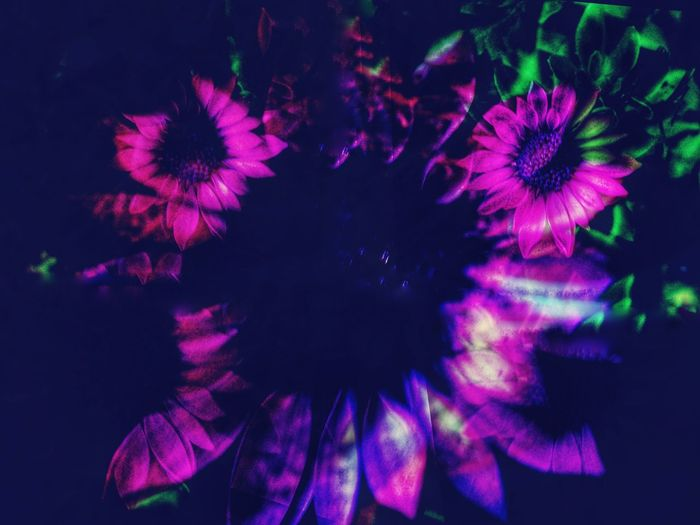 Overlay Editing Experimental Photography EyeEmNewHere Night Multi Colored Vibrant Color No People Celebration Futuristic Flower First Eyeem Photo