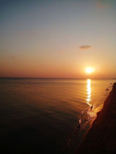 Love Krymia крым👍😊 Love Russia Крым✈✈✈ Autumn🍁🍁🍁 Sky Water Summer Sea Love <3 Love Sea 💖 медузки Seashore Seawalking