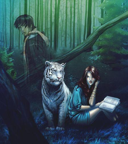 Tiger's curse. Любимая книга:) книга арт  рисунок иллюстрация