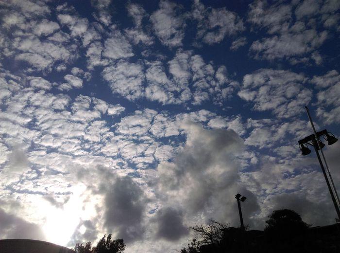 Stitch Sky