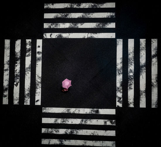 A pink sun umbrella at the Ginza Crossing, Tokyo Pink Color Day Outdoors Striped Shadow Sunlight City Solitude Umbrella Sun Umbrella Crossing Crossroad Urbanphotography Urban Life Walking Walking Alone... Zebra Crossing Stripes Crossing The Street Tokyo ASIA Asian  View From Above Aerial View The Street Photographer - 2019 EyeEm Awards