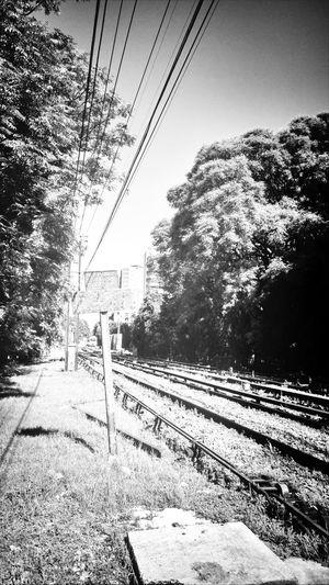 The Walking Dead Desolation Railway Streetphotography Belgrano