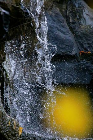 Beauty In Nature Close-up Day Freeze Frame Freshness Motion Nature No People Outdoors Water Waterfall