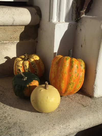 Close-up of pumpkins against stone wall