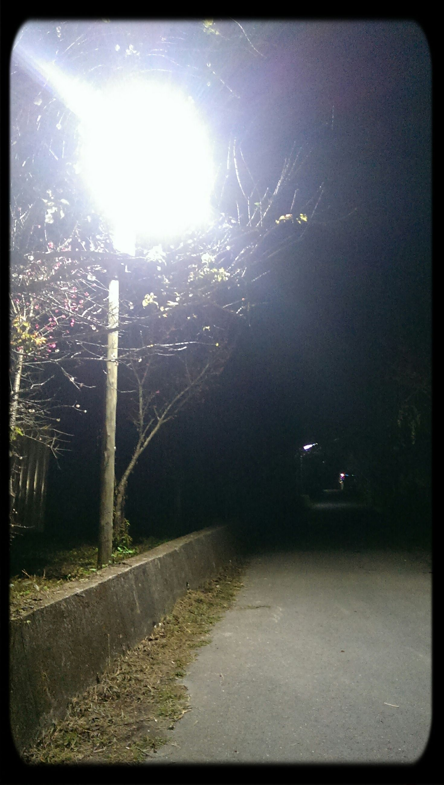 transfer print, street light, the way forward, transportation, road, auto post production filter, street, night, illuminated, sky, diminishing perspective, lens flare, lighting equipment, outdoors, built structure, no people, tree, sunlight, connection, vanishing point