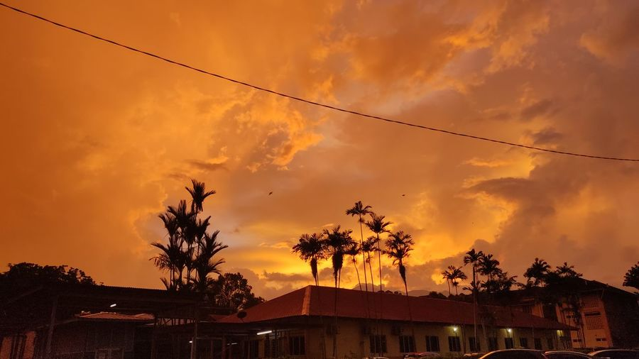 Low angle view of silhouette trees and buildings against orange sky
