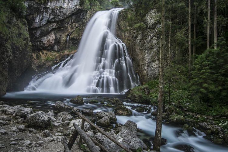 View of waterfall in forest in austria