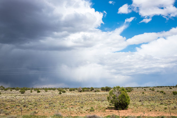 Beauty In Nature Bush Cloud Cloud - Sky Cloudscape Cloudy Day Desert Field Grass Horizon Over Land Idyllic Landscape Nature No People Non-urban Scene Outdoors Overcast Plant Rural Scene Scenics Thunderstorm Tranquil Scene Tranquility Weather