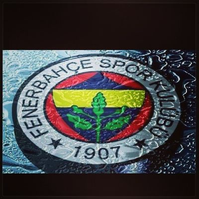 Fenerbahcem Basarilar Instamoods Instaufuk instapic instaturk turkey turkiye instagood instamood izmit