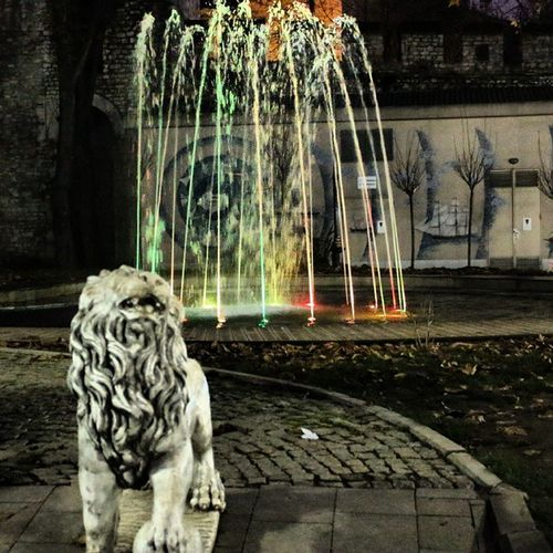 Colors Renk Aslan Istanbul Türkiye Gulhaneparki