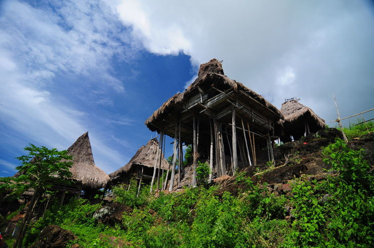 Sumba Traditional Village Indonesia INDONESIA Abandoned Ancient Ancient Civilization Architecture Bad Condition Building Exterior Built Structure Cloud - Sky Culture Damaged Day Grass History House Low Angle View Nature No People Old Ruin Outdoors Plant Sky Sumba Timur Traditional Village Tree