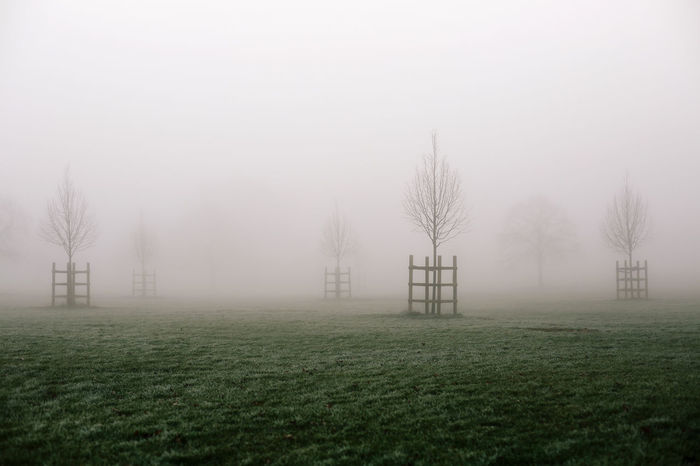 Takeover Bare Tree Beauty In Nature Broomfield Park Cityscape Cold Temperature Day Fog Foggy Grass Hazy  Landscape Miles Away Mist Nature No People North London Outdoors Seasonal Sky This Week On Eyeem Tranquil Scene Tranquility Tree Weather Winter Postcode Postcards