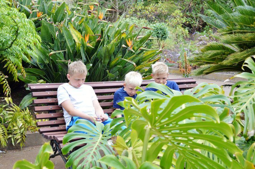 🌴🌴😎 Togetherness Leaf Women Senior Adult Senior Women Agriculture Plant Friend Flowerbed Vegetable Garden Ornamental Garden Garden Path Formal Garden EyeEmNewHere