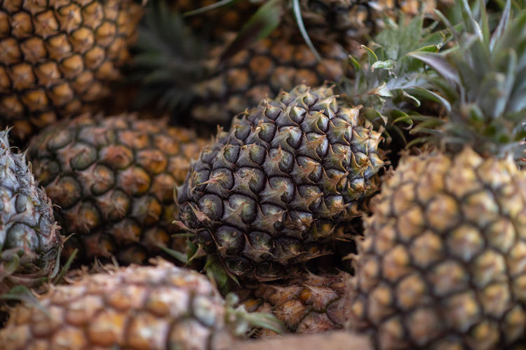 Pineapple Food And Drink Food Selective Focus Pineapple Close-up Healthy Eating Fruit No People Freshness Tropical Fruit Wellbeing Day Pine Cone Pattern Natural Pattern Nature Growth Green Color Plant Brown