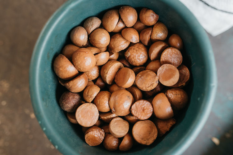 From an organic macadamia farm outside of Antigua, Guatemala Organic Abundance Bowl Brown Close-up Container Directly Above Food Food And Drink Healthy Eating High Angle View Macadamia Nut Macadamia Nuts Nut Nut - Food Organic Farming Organic Food Snack