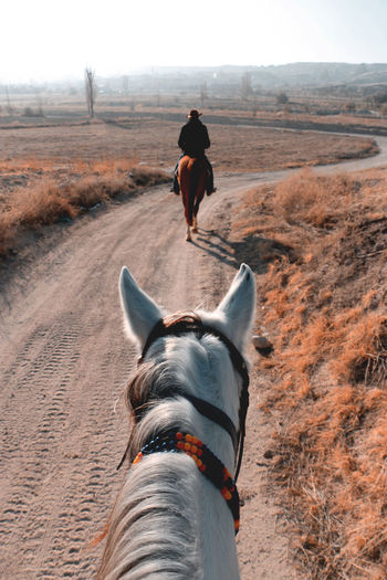 Rear view of person riding horse in country road