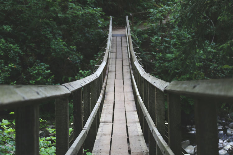 Narrow Footbridge In Forest