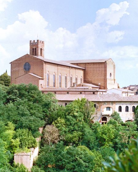 Film Photography Tuscany Siena Architecture Built Structure Building Exterior Plant Building Tree No People Sky History Day The Past Outdoors