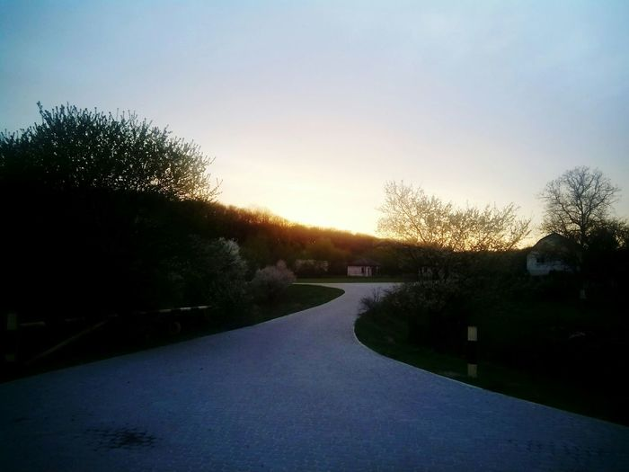 Taking Photos Happyness весна Spring Весна💐🌷🌿 Forest Enjoying Life Happy Day☺ Goodevening  Sunset ☀