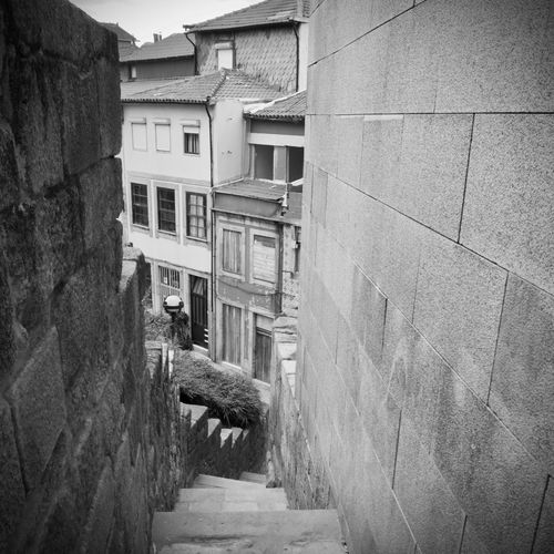 BeW City Cityscape Oporto, Portugal Alley Animal Animal Themes Architecture Black And White Building Building Exterior Built Structure City Day Domestic Domestic Animals Mammal Monochrome No People One Animal Outdoors Pets Residential District Vertebrate Wall Wall - Building Feature Window