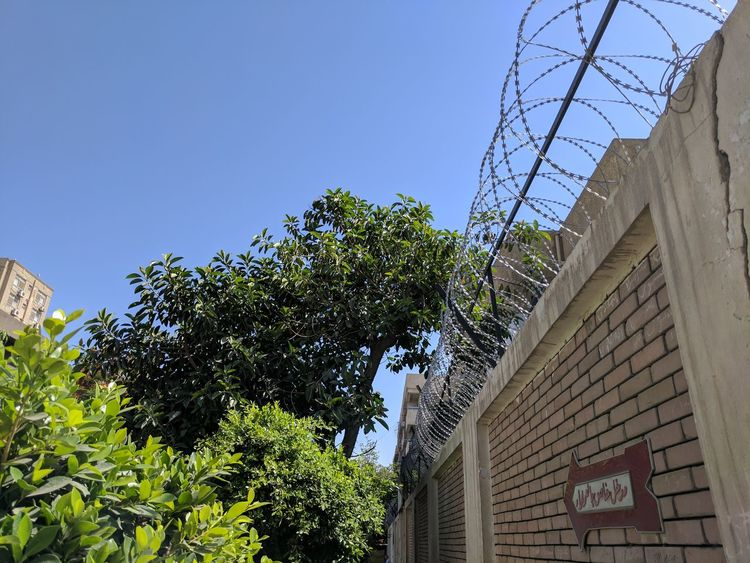 Blue Clear Sky Day Fence Green Color Low Angle View Maadi No People Sky Trees Wall
