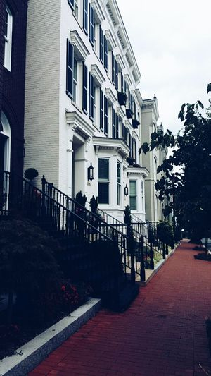 Vintage Victorian Houses Street Street Photography Victorian Houses Trees Flowers