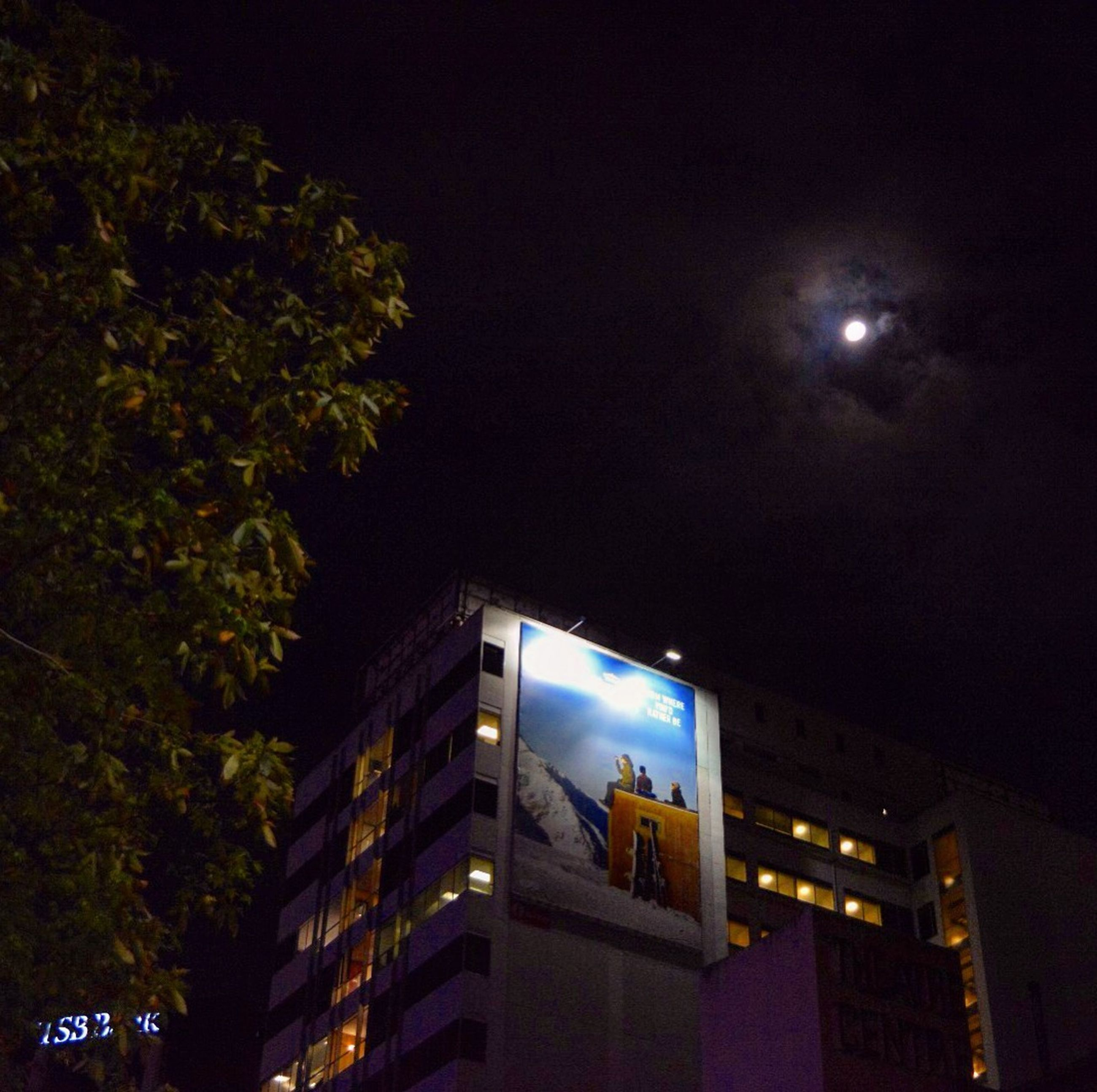 night, illuminated, building exterior, architecture, built structure, low angle view, sky, moon, city, street light, building, lighting equipment, residential building, tree, light - natural phenomenon, outdoors, residential structure, clear sky, no people, dark