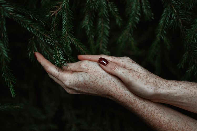 Cropped image of woman holding plant against trees