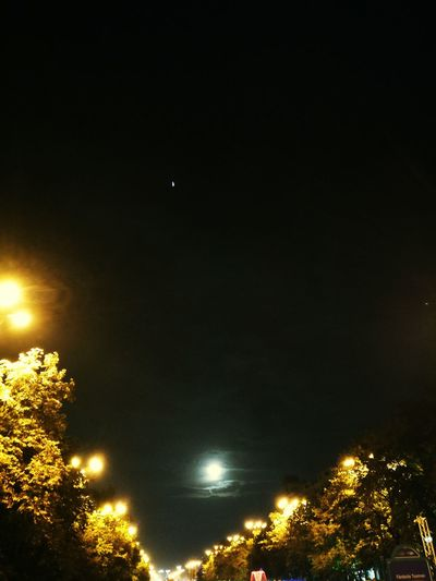 Illuminated Night Tree Tranquil Scene Tranquility Sky Outdoors Dark City Life No People City Lights At Night Moonlight
