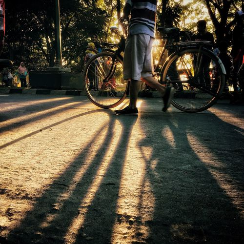 The road Bicycle Real People Shadow Transportation Outdoors Streetphotography Morning Light Road